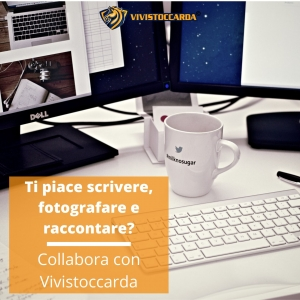 Collabora con Vivistoccarda